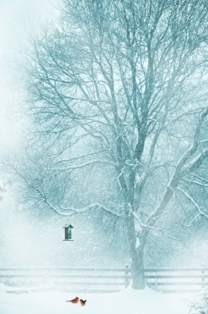 Conception de la carte de No�l avec un couple de cardinaux sous le chargeur dans la neige.