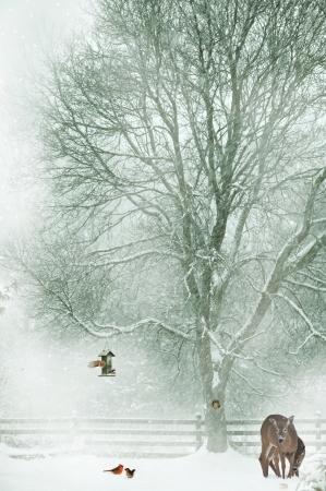 야생 동물은 혹독한 겨울 환경에서 살아 남기 위해 고군분투 크리스마스 카드 디자인. 스톡 콘텐츠