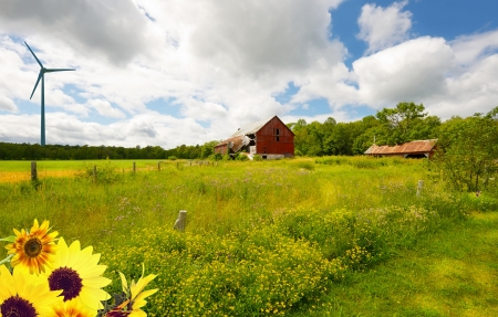old red barn: Beautiful country landscape with wind turbine.