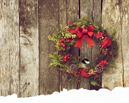 Christmas wreath with natural decorations, a big red bow, and a cute little chickadee peeking out hanging on a rustic wooden wall with copy space   Stock Photo