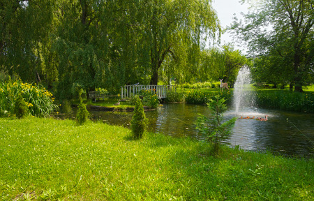 weeping willow: Animals gathering at a beautiful pond, in summer