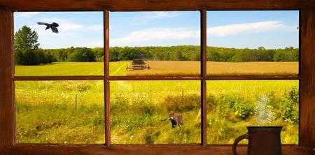 Afficher la fen�tre de la ferme d'un agriculteur couper le foin � l'automne, avec un chiot dans le premier plan, et un corbeau en vol Banque d'images