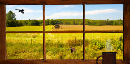 window view: View out the farmhouse window of a farmer cutting hay in the autumn, with a puppy in the foreground, and a raven in flight   Stock Photo