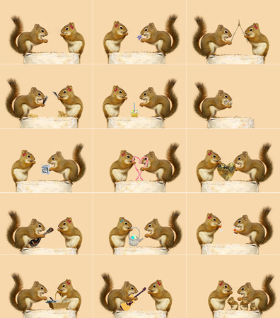 The love story of two little squirrels  A sequence of humorous events, ending with them starting a family  Each full sized image is available in my portfolio  some are without the hair bow