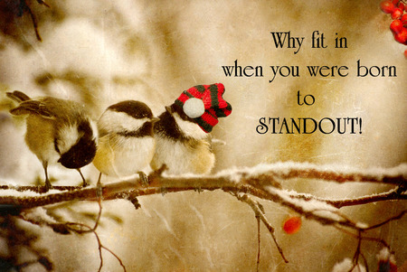 Inspirational quote on individuality with a grunge textured image of a special little chickadee wearing his Christmas hat, standing out in the crowd. Banque d'images
