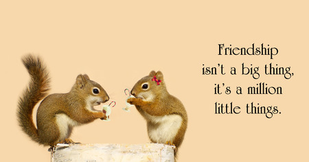 Inspirational quote with two little squirrel friends sharing some Christmas cheer.
