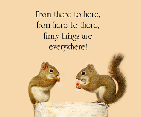 humorous: Inspirational quote about humor, with a pair of squirrels in love sipping liquer from crystal glasses.
