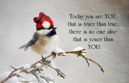 눈보라 동안 그의 크리스마스 모자를 쓰고 귀여운 박새와 개성에 대한 영감 따옴표.