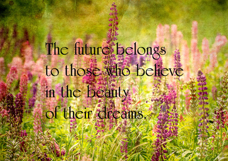 Inspirational quote on life on a grunge textured image of a field of  beautiful lupine flowers.