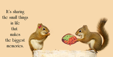 Inspirational quote on sharing, with a little male squirrel sharing freshly picked vegetables with his sweetheart in the autumn.