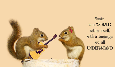 philosophy of music: Inspirational quote on music with a young male squirrel playing a love song for his sweetheart. Stock Photo