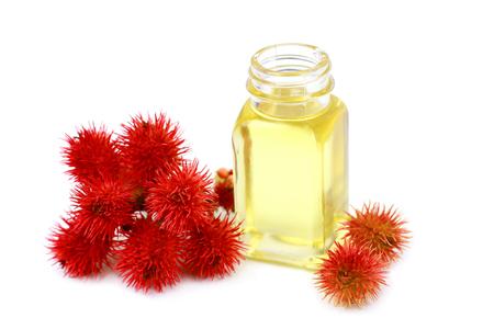 frijoles rojos: El aceite de ricino en botella de vidrio en el fondo blanco Foto de archivo