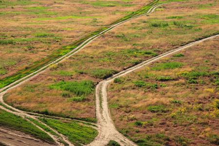 pastureland: Pathways in the open field top view