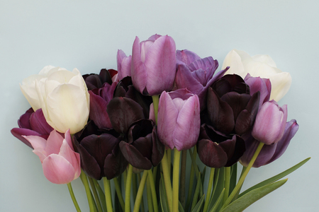 Spring bouquet of colorful tulips on light blue background