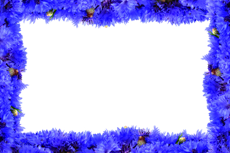 Frame from blue cornflowers