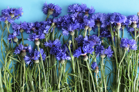 Bouquet of cornflowers on blue background