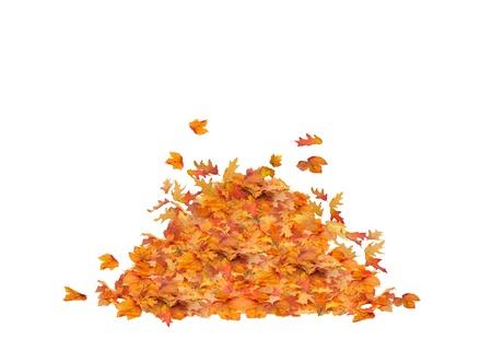 秋葉分離、オレンジ色、赤色、黄色および茶色色のヒープを杭します。 写真素材