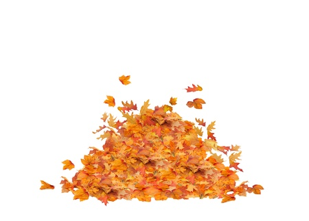 pile of leaves: Pile heap of Fall Leaves Isolated, orange, red, yellow, and brown colors