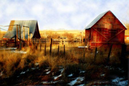 montana: Barn in Montana