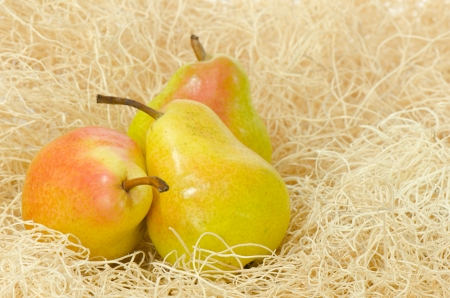 nested:  Three pears, straw and wooden crate