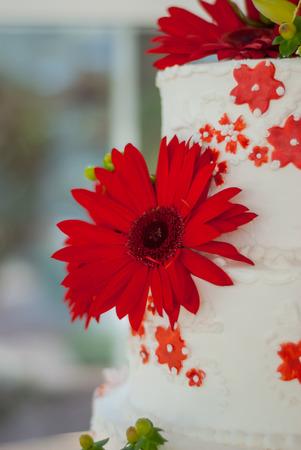 red gerber daisy: Red Gerber Daisy on Wedding Cake