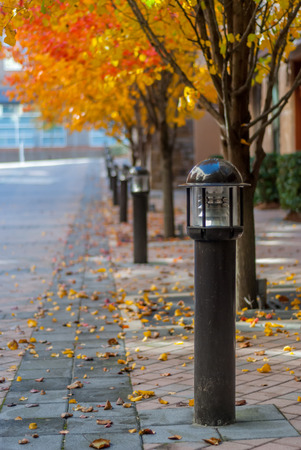 Lamp Posts in Fall Stock Photo