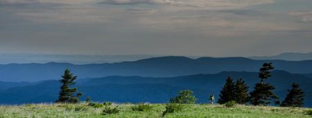 appalachian trail: A female hiker traverses a green bald with mountain ridges behind her