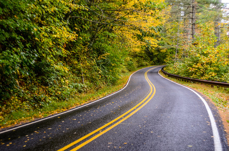 A wet road shines after a rainy fall day Imagens