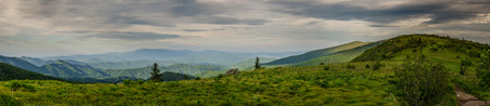 extend: Grassy balds extend for several miles north of Roan Mountain