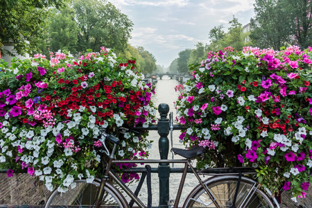 A bicycle in front of flower boxes and a canal in Amsterdam Stock Photo