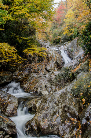 meanders: A creek meanders over a rock face while surrounding trees change color in fall