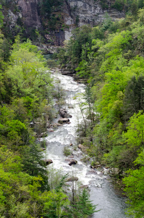 The Toccoa river flows heavily through the Tallulah Gorge during a high release