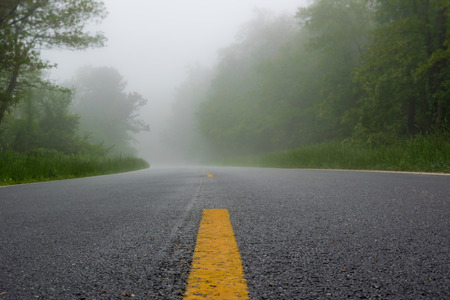 Fog creeps over Skyline Drive on a rainy morning in Shenandoah National Park