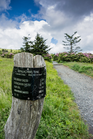 appalachian trail sign: A sign post at Carvers Gap indicates distances hikers will face as they climb Round Bald Stock Photo