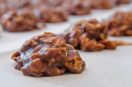 A close up of chocolate and peanut buter oatmeal cookies on parchment paper
