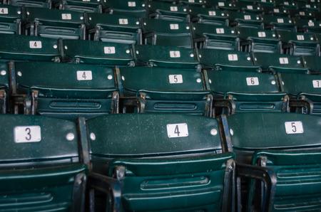 cavallo in corsa: Verdi sedili ribaltabili nella sezione stadio di una arena sportiva