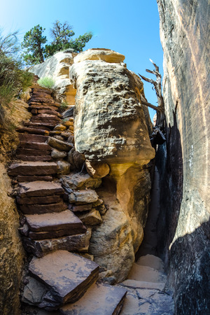 slot canyon: A long stretch of the Joint Trail in the Needles District takes hikers through a slot canyon in Canyonlands National Park