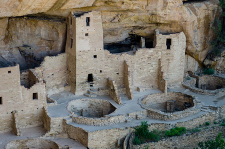 the dwelling: Cliff Palace dwelling in Mesa Verde National park