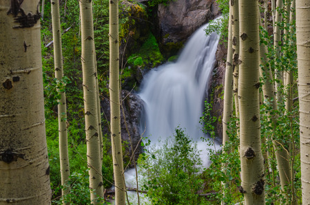 rushes: Snow melt rushes down in waterfalls from Un Compaghre peak near Gunnison, Colorado