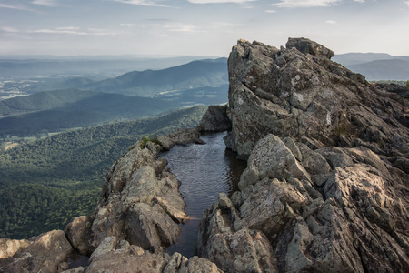 appalachian trail: Rain water collects in a pool of water high in the mountains of Shenandoah National Park Stock Photo