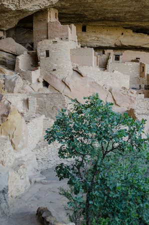 The tallest part of Cliff Palace Dwelling in Mesa Verde Stock Photo