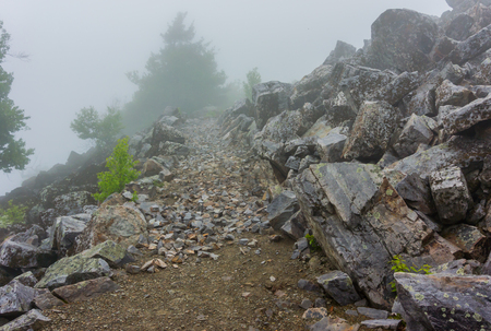 appalachian trail: The Appalachian Trail turns rocky near the peak of Blackrock Mountain in Shenandoah Stock Photo