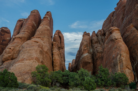 geological feature: Tall narrow stone formations in a park in Utah