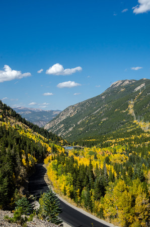 mount evans: Looking down on mountain slopes covered with pine trees and yellow aspen trees