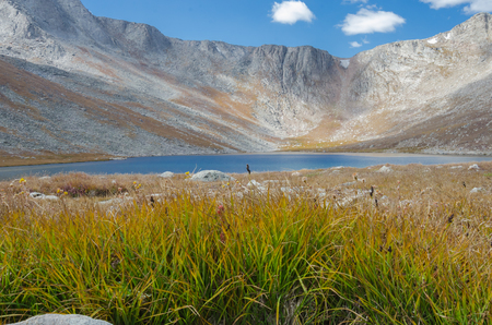 mount evans: Grasses in front of a mountain lake near Mount Evans in Colorado