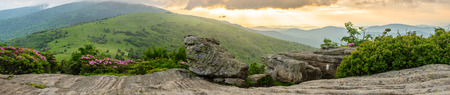 A panoramic shot from Jane Bald at sunset during the rhododendron bloom Stock Photo