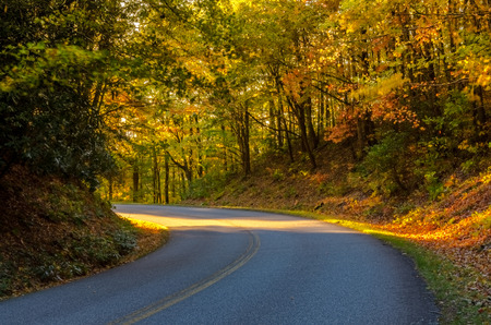 Rays of light peek around the corner of a road in fall
