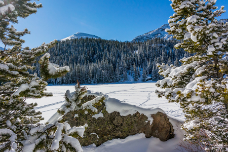 bear lake: A popular place to snow shoe and explore the great outdoors in winter is Bear Lake in the Rocky Mountains