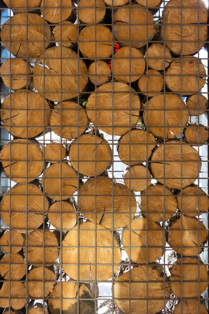 discs: Wooden discs in metal cage with light shining through Stock Photo