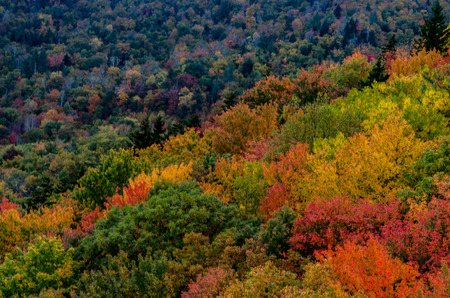 north ridge: Blue Ridge Mountains Pop with fall colors near Asheville, North Carolina in early October